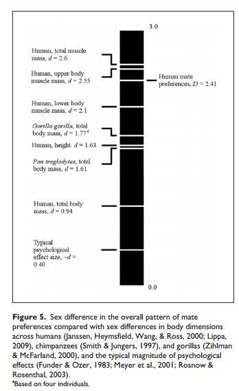 Geschlechterunterschiede im Vergleich