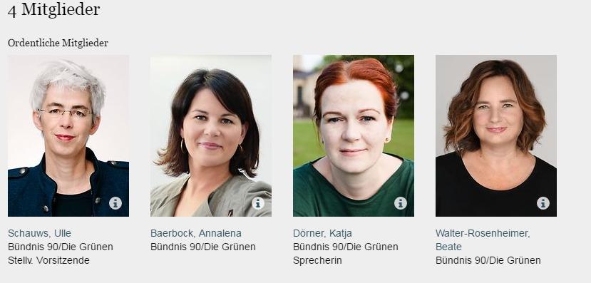 Deutscher Bundestag Ausschuss für Familie Senioren Frauen und Jugend Grüne